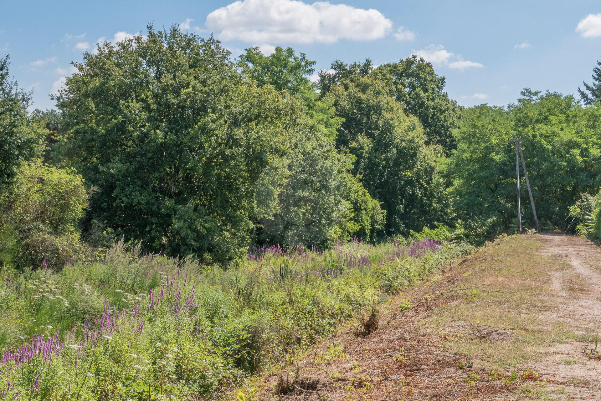 La voie ferrée fermén des Bordes à Orléans. Pont à Bray en Val
